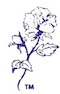 Deb Lee Gould, MEd